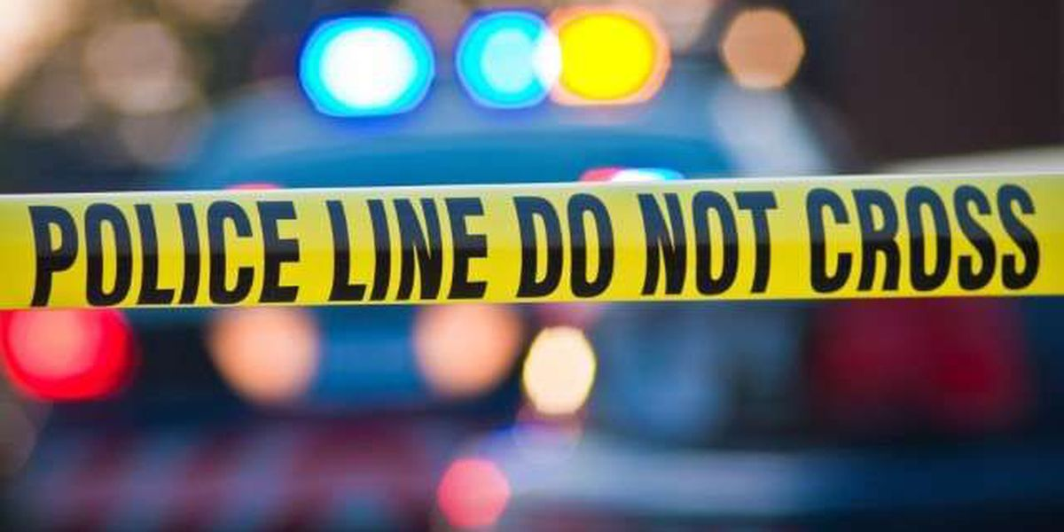 Coroner: Homeless man dead from apparent hypothermia