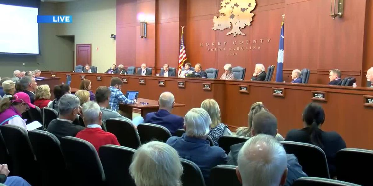 Horry County Council meeting attracts protesters