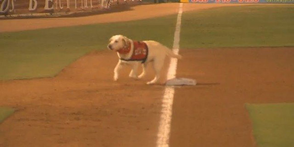 RAW: Deuce takes a final lap with the Myrtle Beach Pelicans