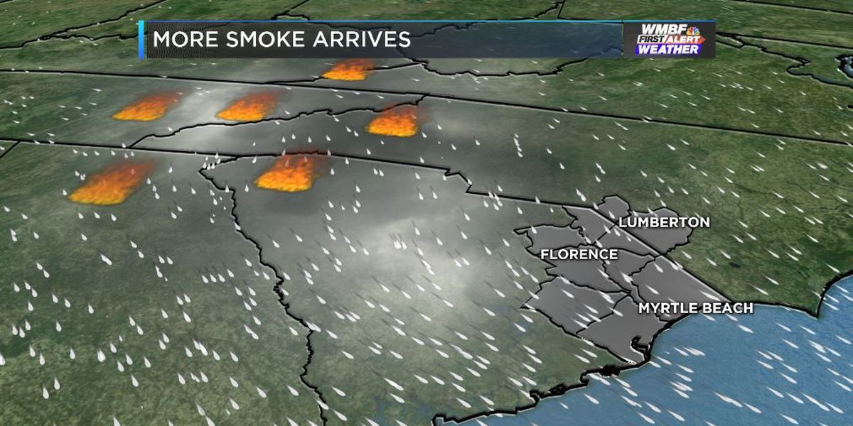 Pee Dee counties under air quality alert due to wildfires