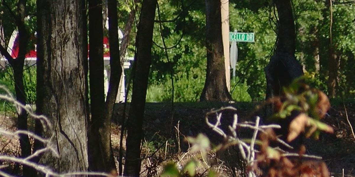 What the annexation of seven acres of land in Myrtle Beach means for the community