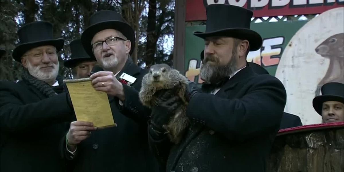 Groundhog Day: Punxsutawney Phil says 'a beautiful spring it shall be'