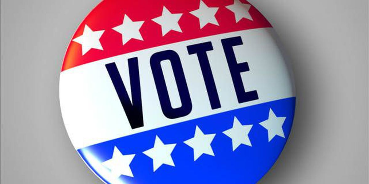 Election 2014 Constitutional Amendment questions at the polls
