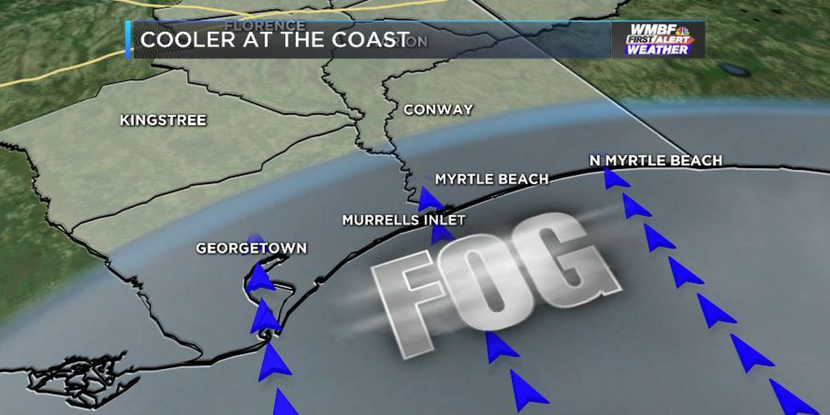 FIRST ALERT: Thick Sea Fog rolls into the Grand Strand