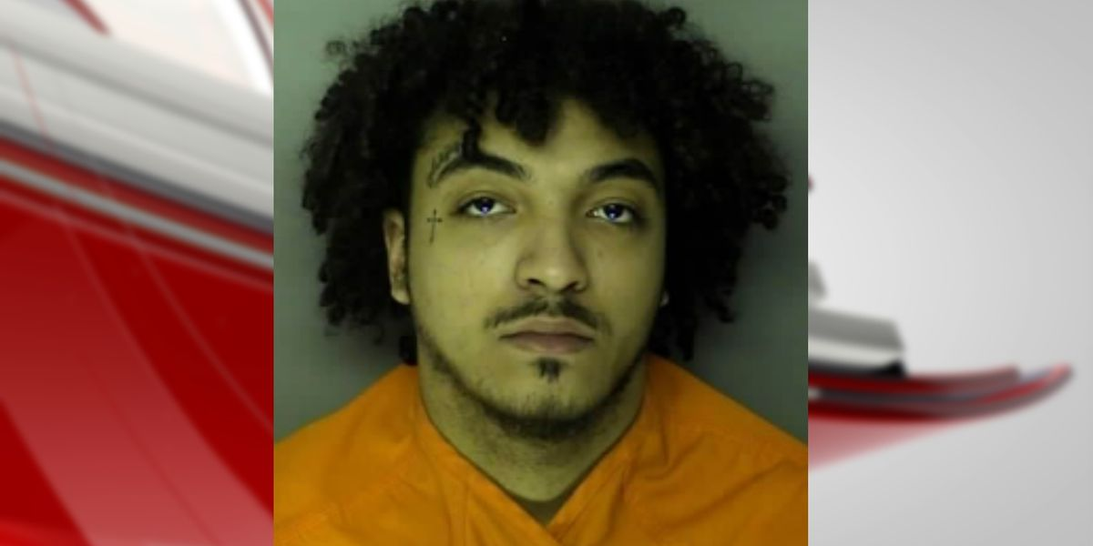 20-year-old arrested, charged with murder in fatal shooting of two brothers from Longs