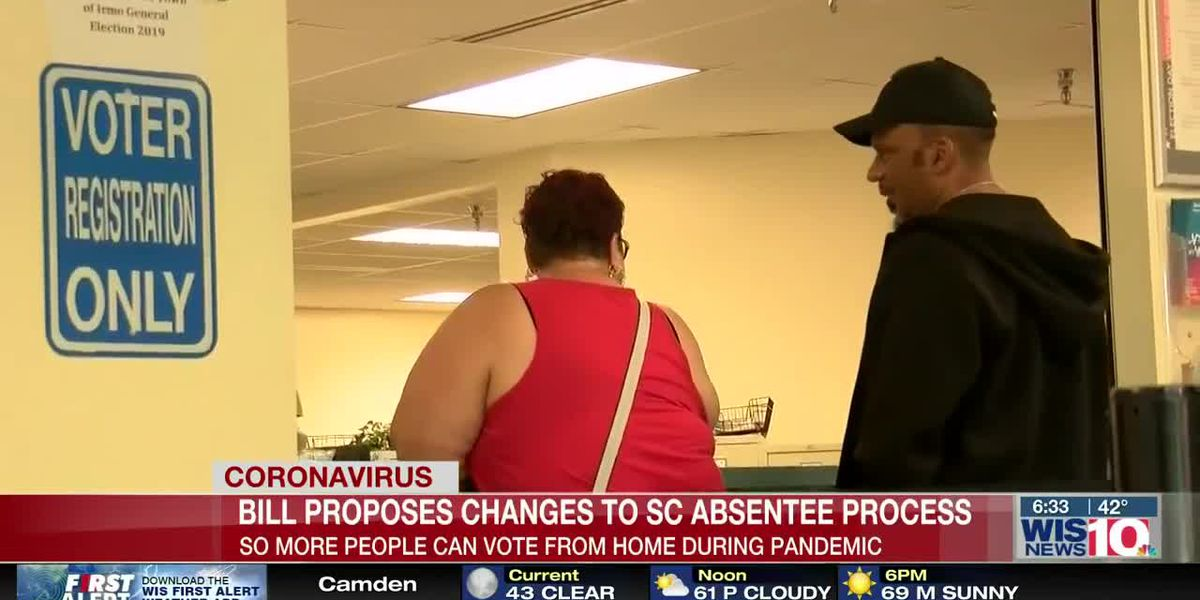 New bill says voters who choose to vote from home during pandemic should be able to