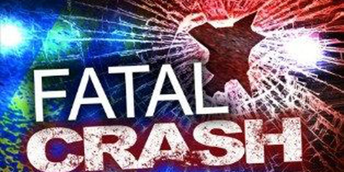 Man killed after train crashes into car in Williamsburg County