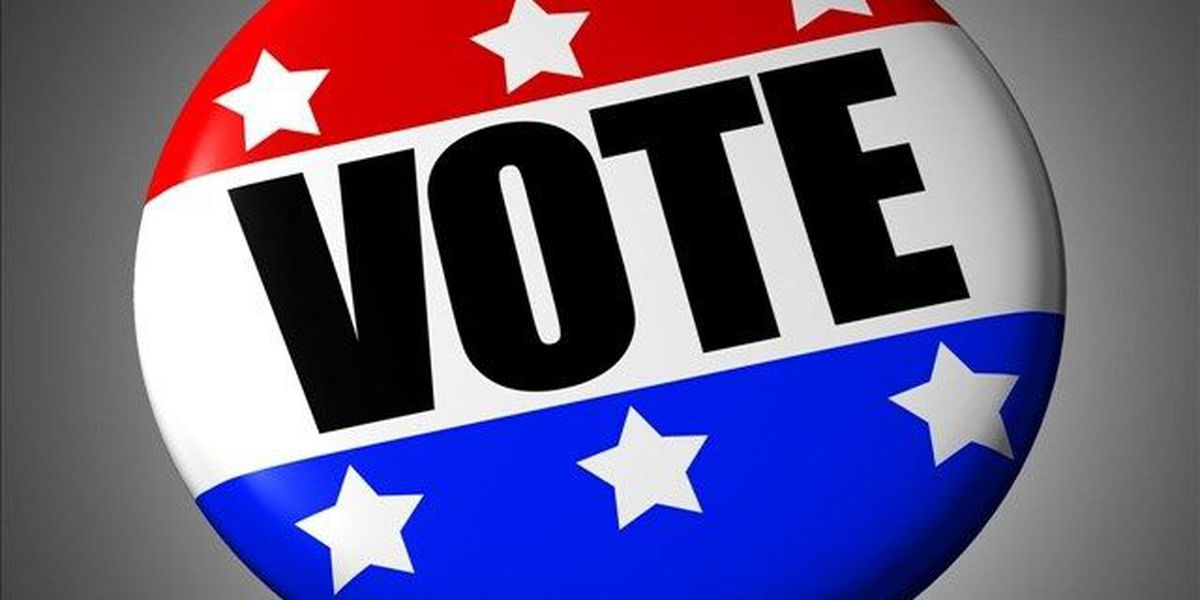 View the Primary Election candidates in your area here