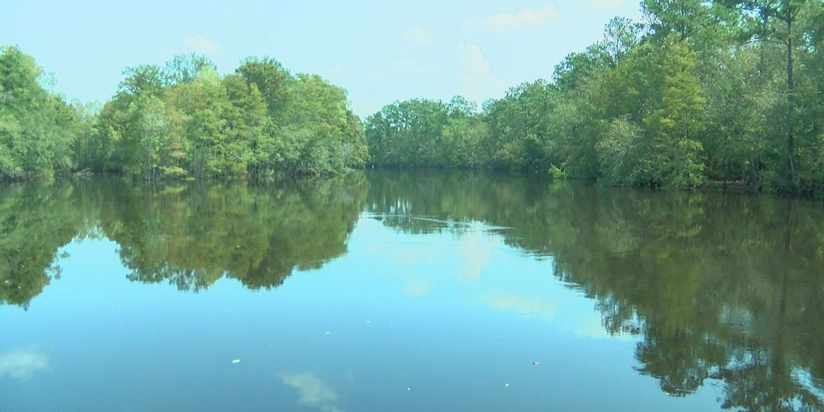 Waccamaw Riverkeeper says not to worry about coal ash pond breach
