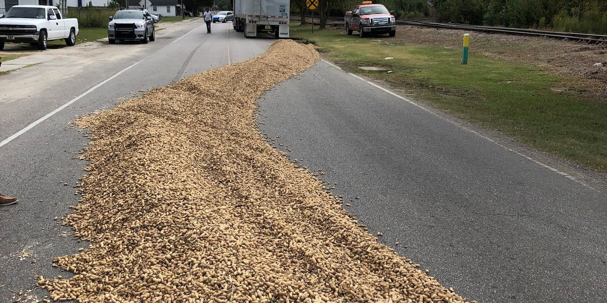 Truck leaves massive trail of peanuts in S.C.
