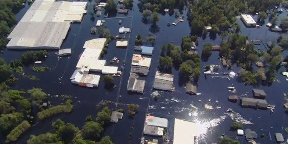 Disaster unemployment assistance available following Florence