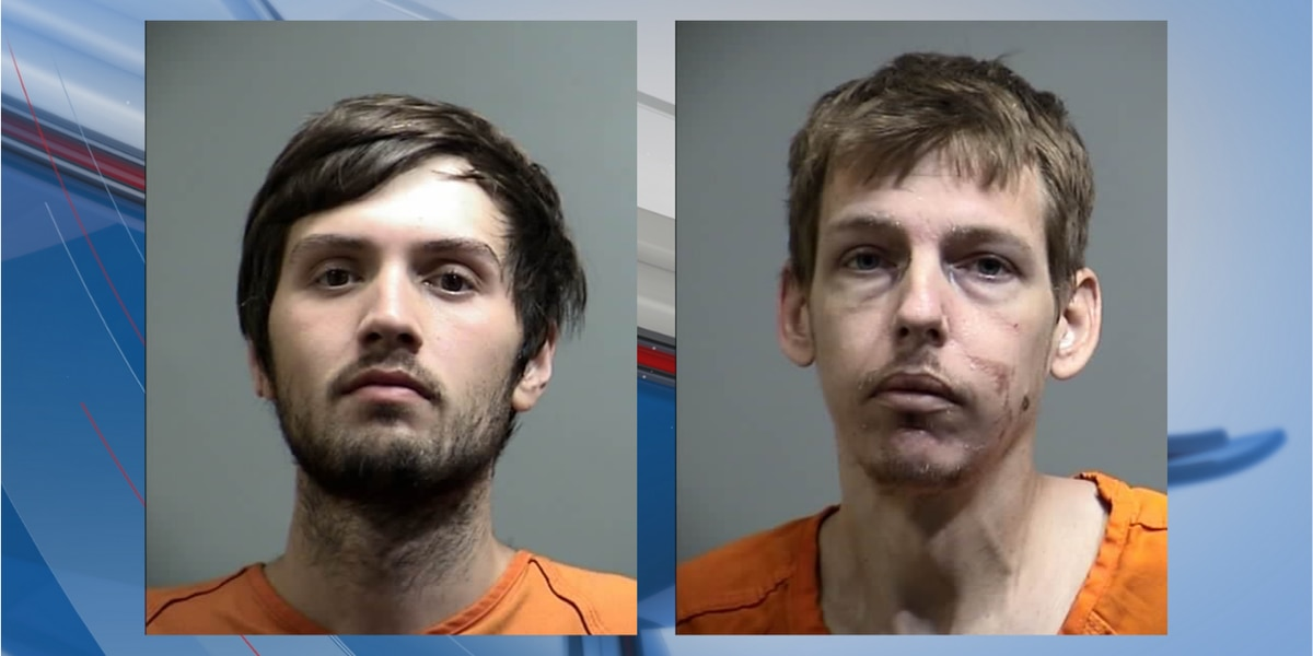 Pair of men face drug, theft charges in Georgetown County