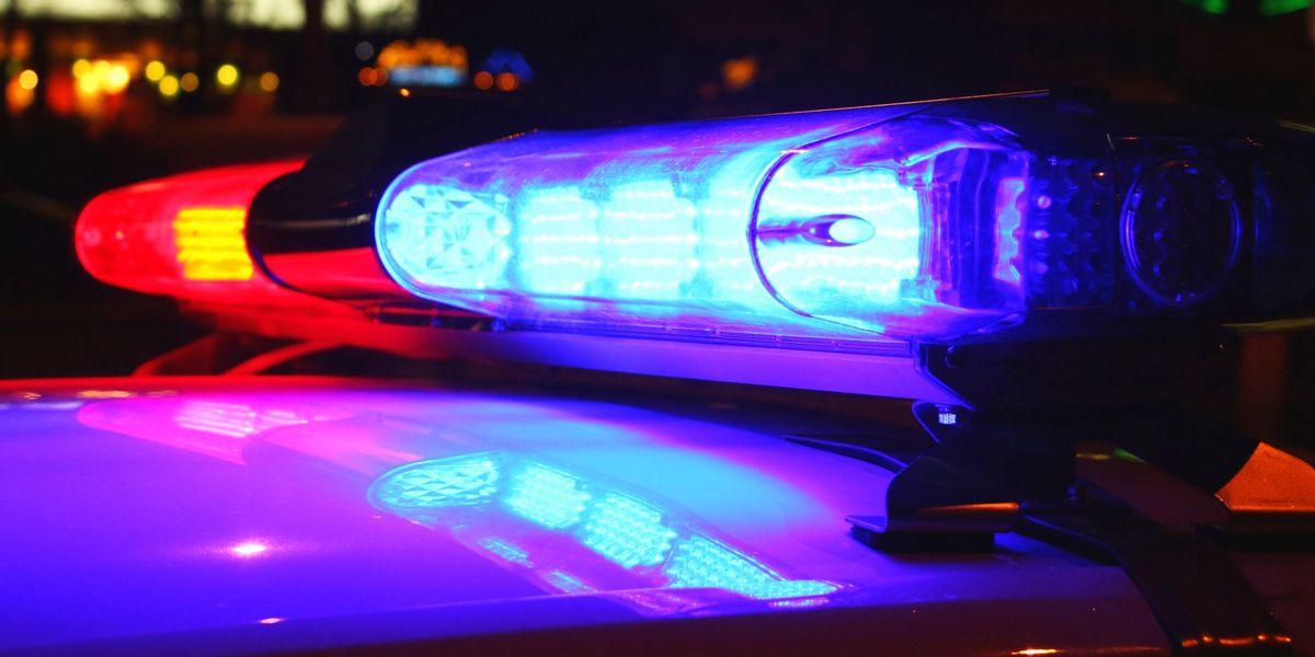 Gun stolen from truck in Litchfield Beach, police say