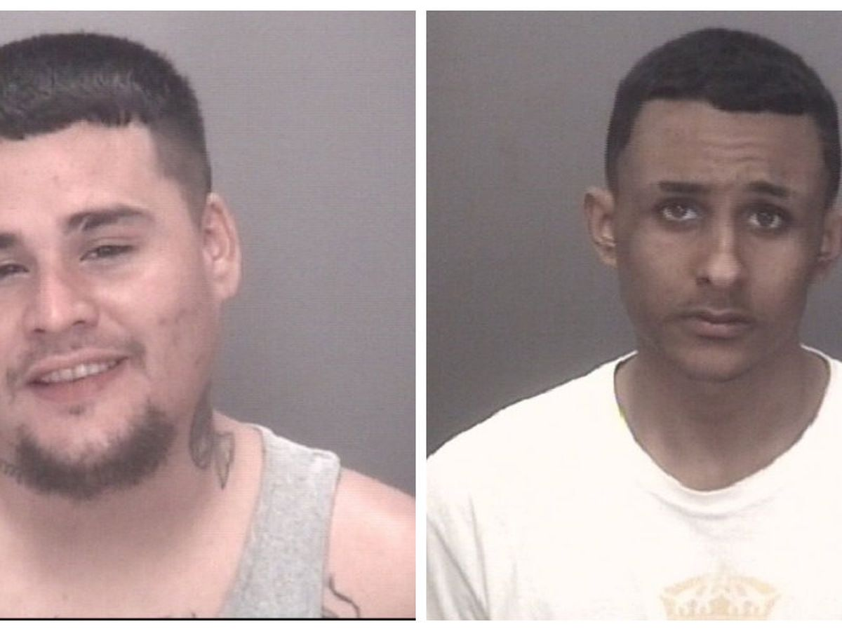 Two facing drugs charges after traffic stop in Robeson County