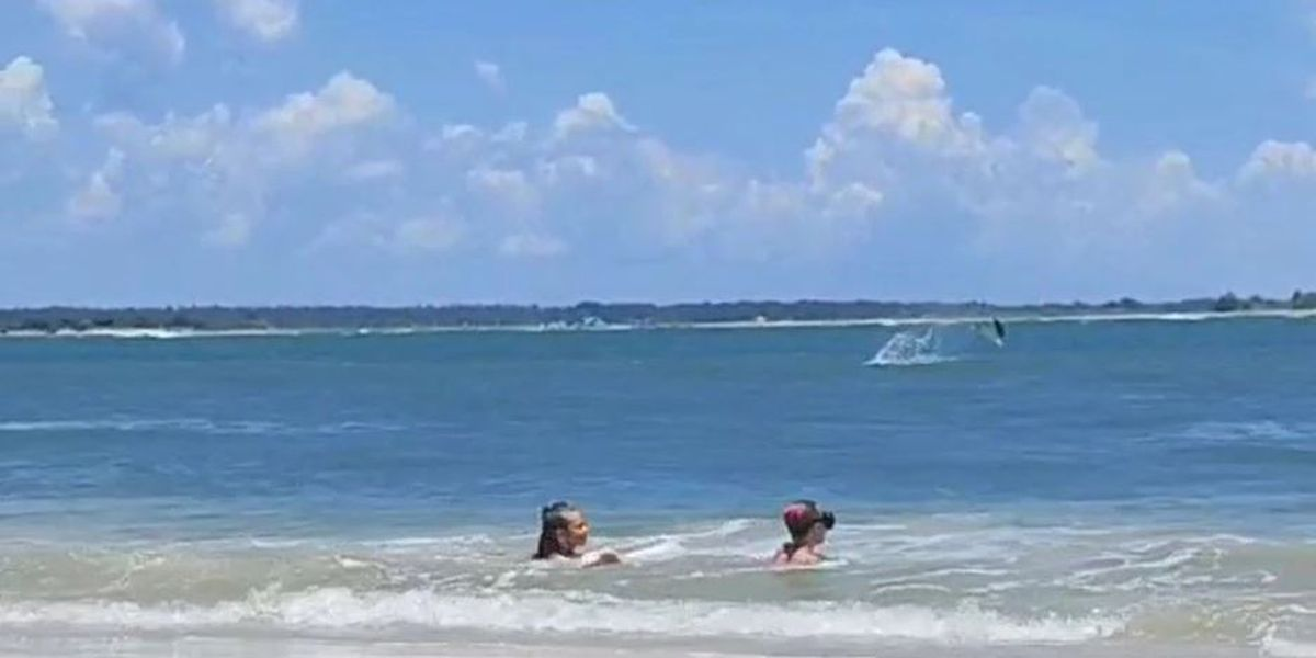 Spinner shark jumps out of water as girls play nearby at North Topsail Beach