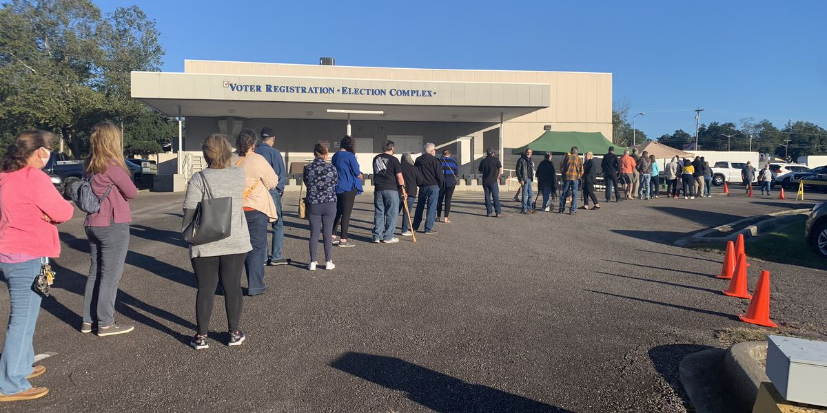 Horry County election officials conduct test of ballot scanner