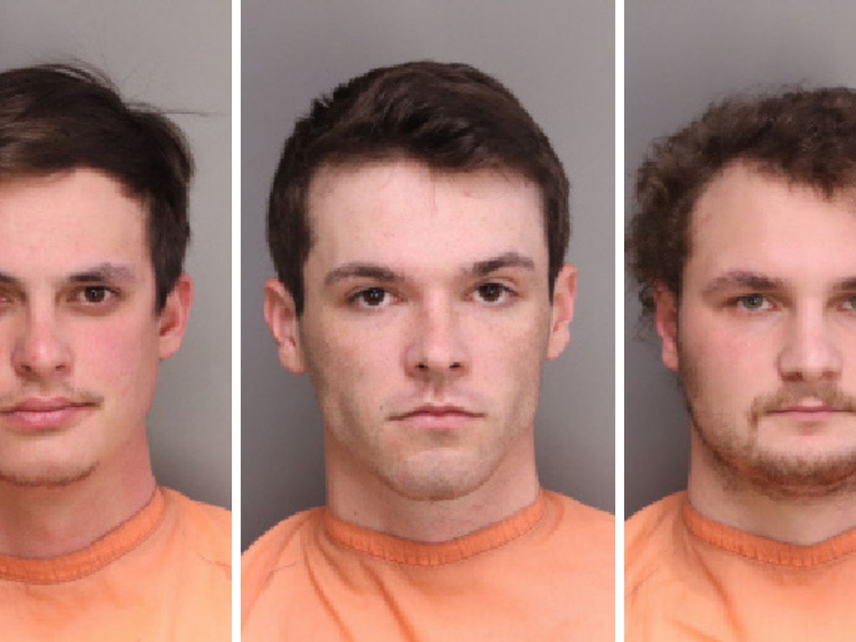 Three Francis Marion University baseball players arrested, charged with hazing