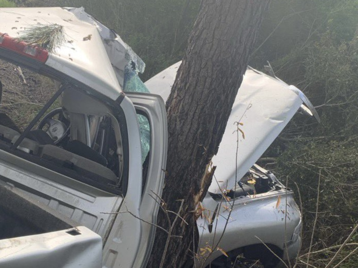 1 injured after vehicle collides with tree in Horry County