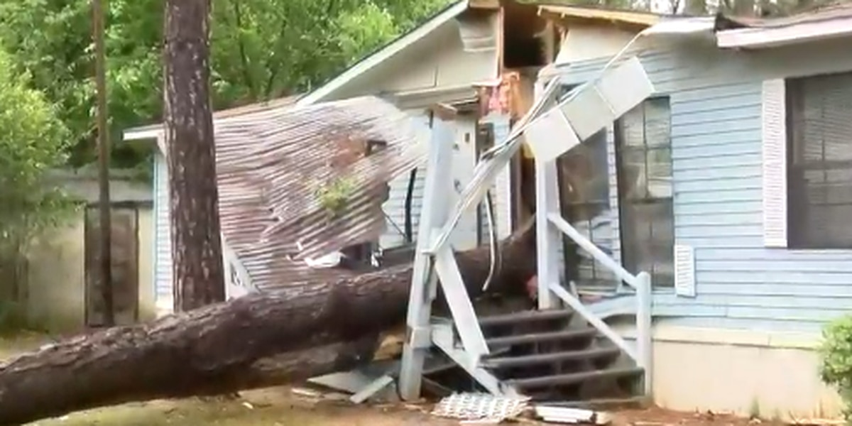 3-year-old boy in 'stable, but critical condition' after tree falls onto Sumter home Friday