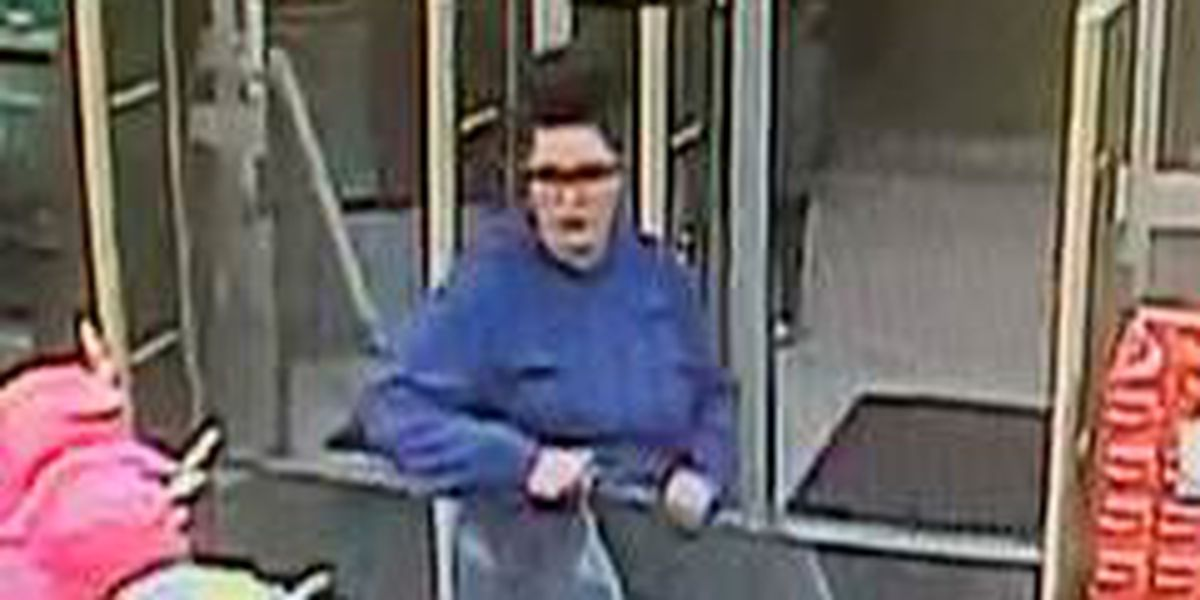 Police seek to identify fraud suspect