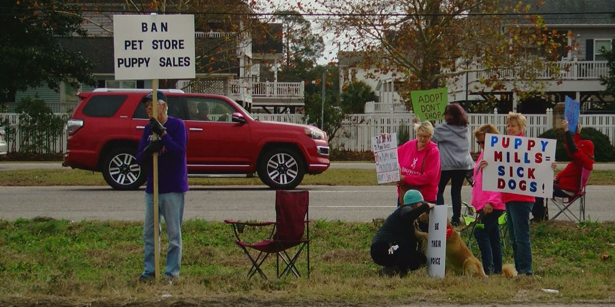 Protesters gather to speak against new puppy store