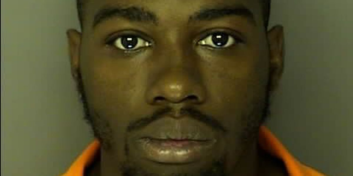 Conway man pleads guilty to carjacking, firing at police in 2014