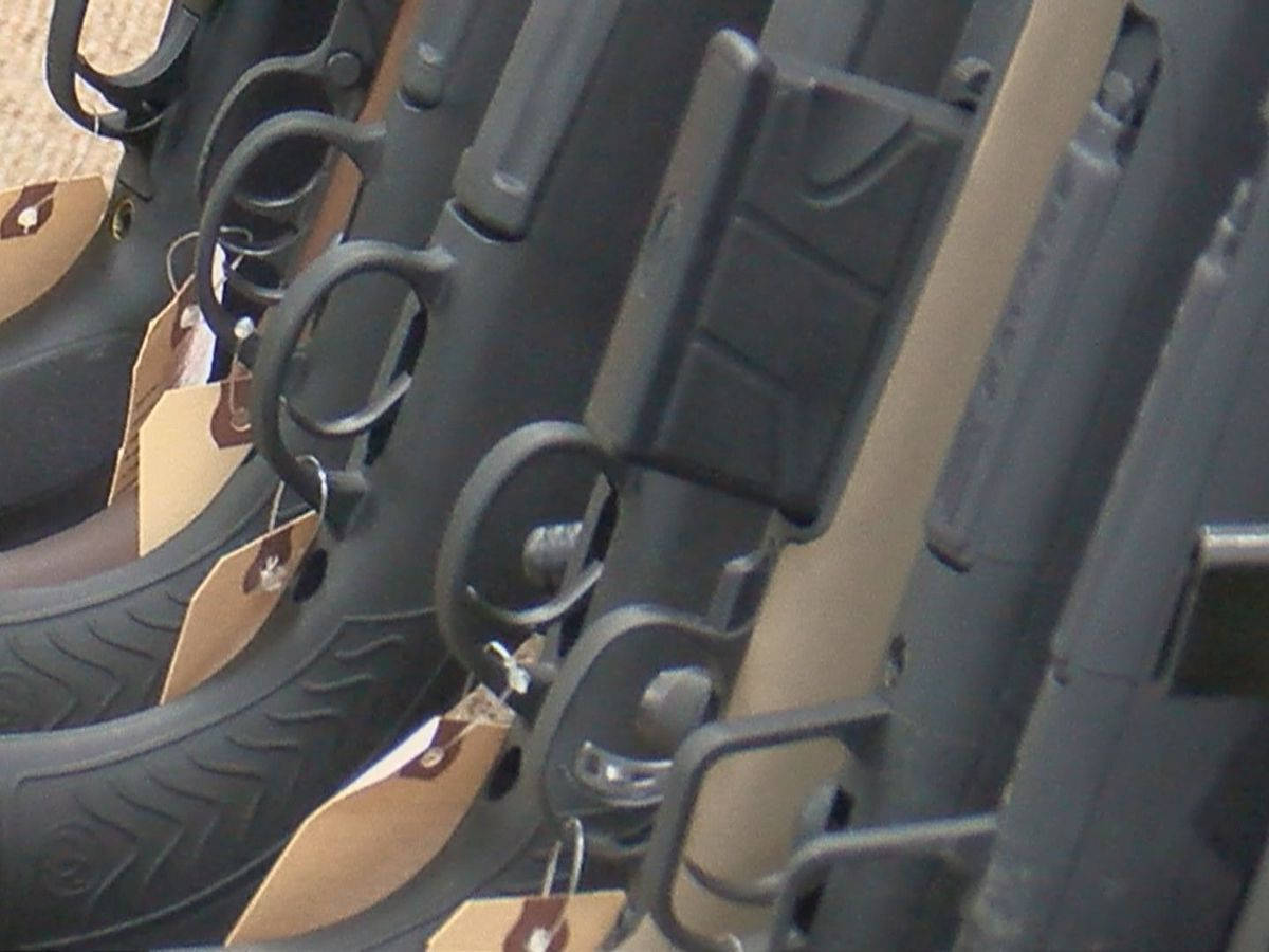 Horry County leaders set to discuss revised firearm ordinance