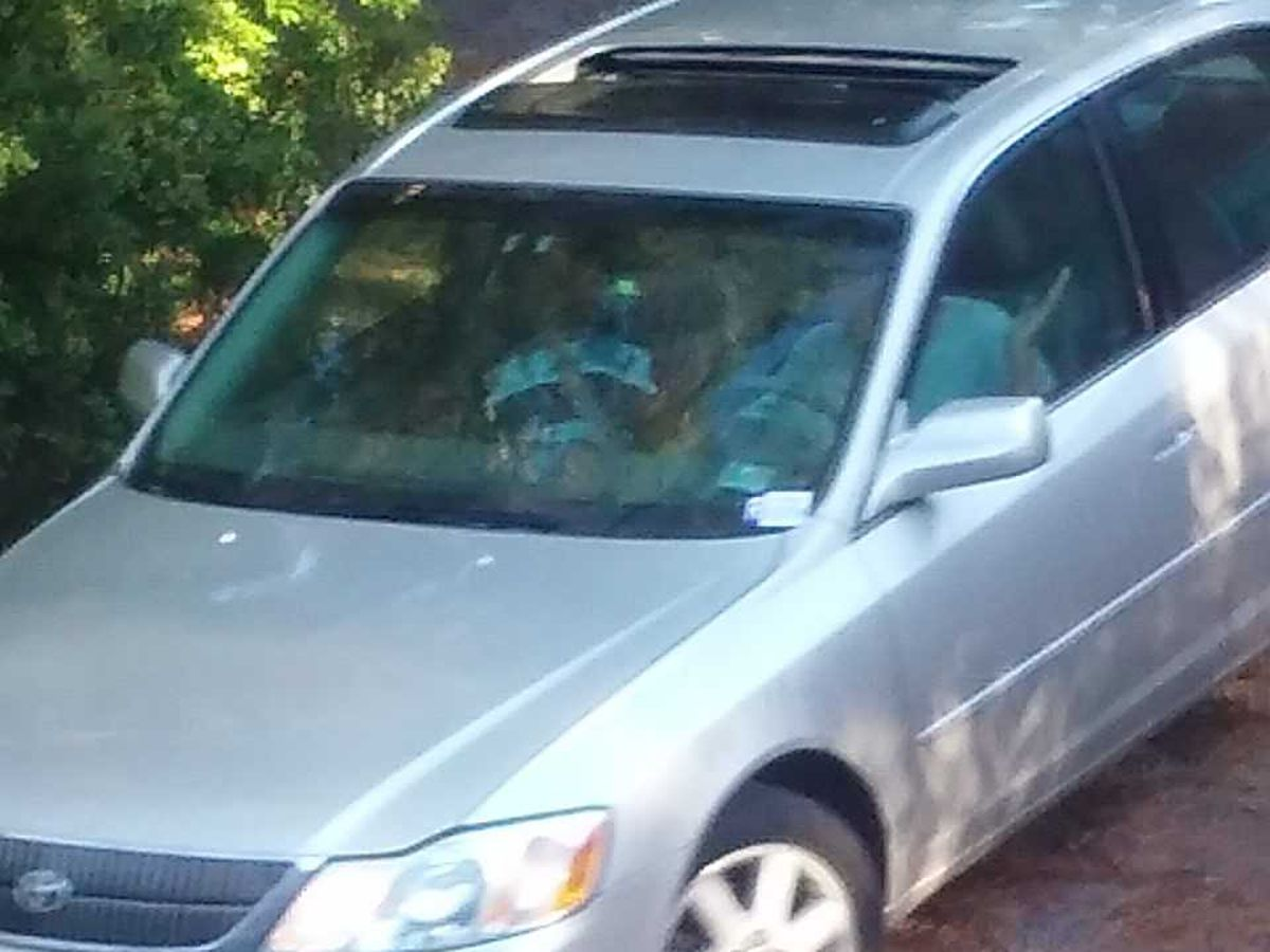Georgetown County authorities look for woman wanted for questioning in vandalism