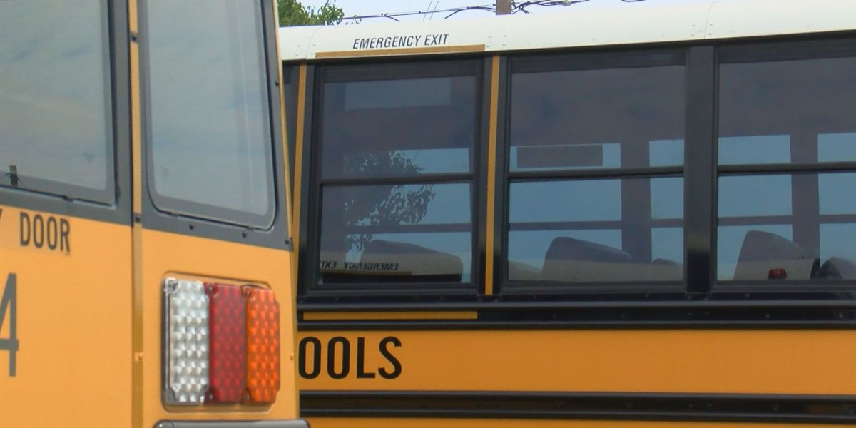 Viral video of Ohio crash renews discussion of seat belts on school buses