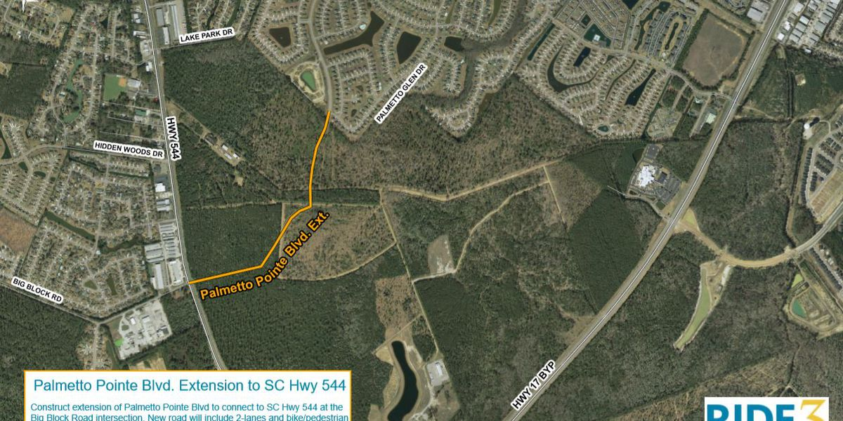 Palmetto Pointe Boulevard extension project is on track, some residents express concerns