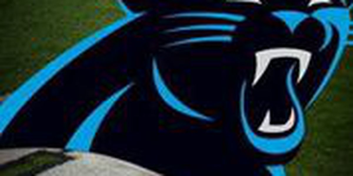 Young Carolina Panthers experience early success thanks to hard work