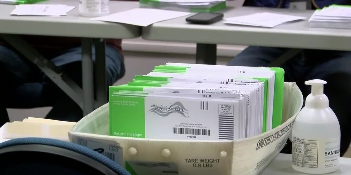 Horry County representative introduces bill requiring photo ID to vote absentee