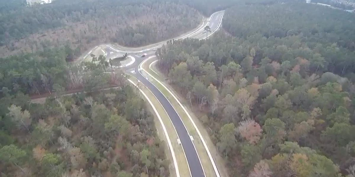 Ribbon cutting set for Palmetto Pointe Blvd. extension