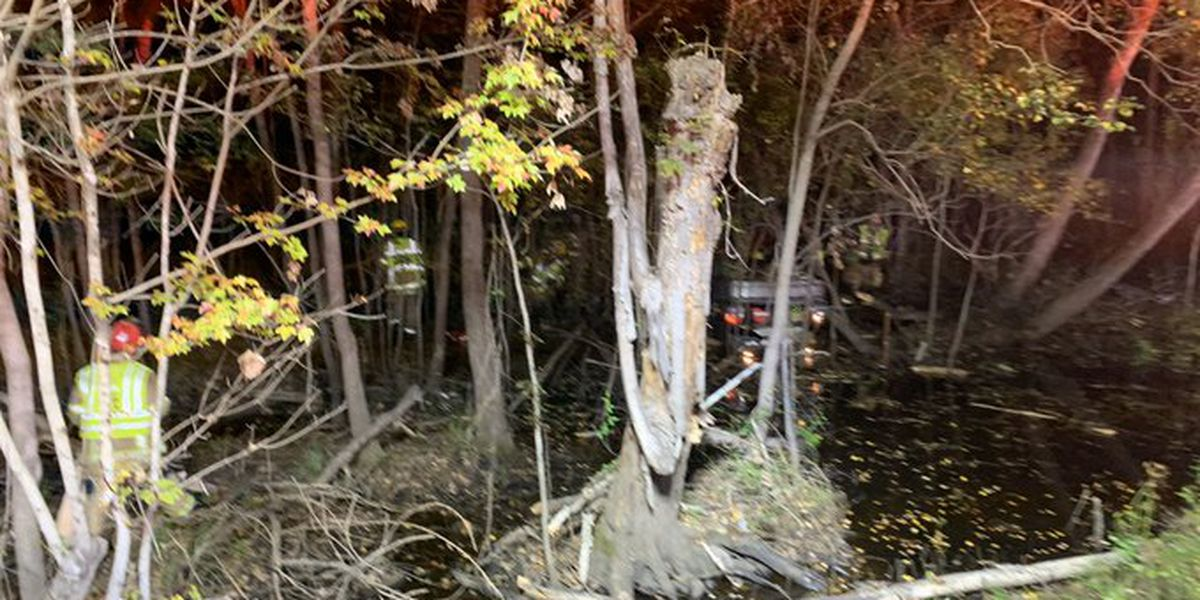 Coroner identifies victim after vehicle overturns in swamp in Conway