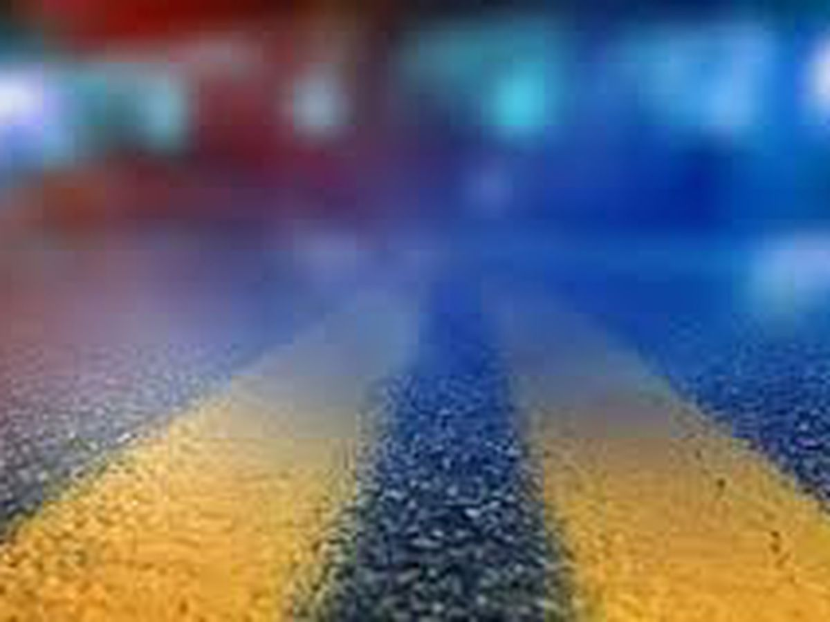 One dead in Florence County after vehicle hits tree, overturns in creek