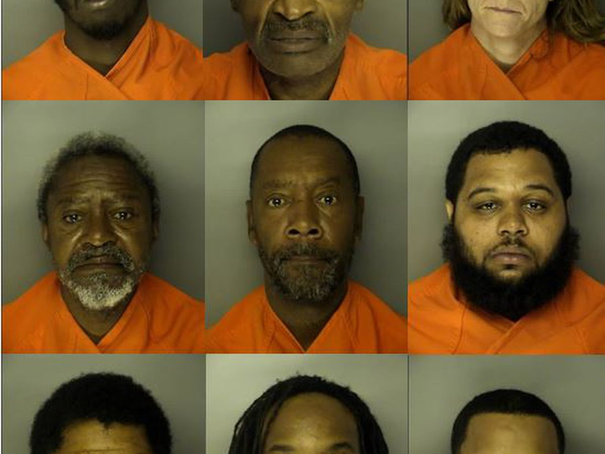 Horry Police: 10 arrested on drug and gun charges after months-long investigation