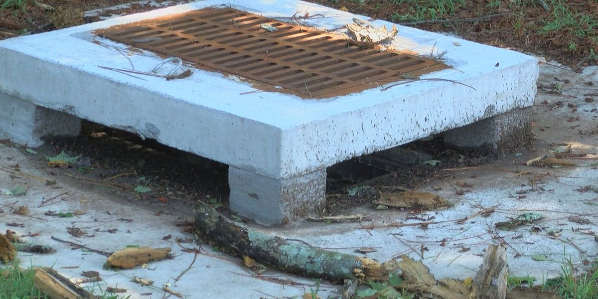 Dorian causes minor damage in Marion; no flooding thanks to stormwater project