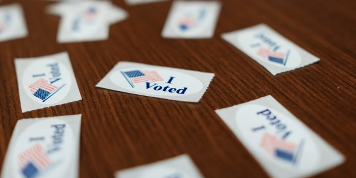 Georgetown County reports over 10,000 people vote absentee ahead of Election Day