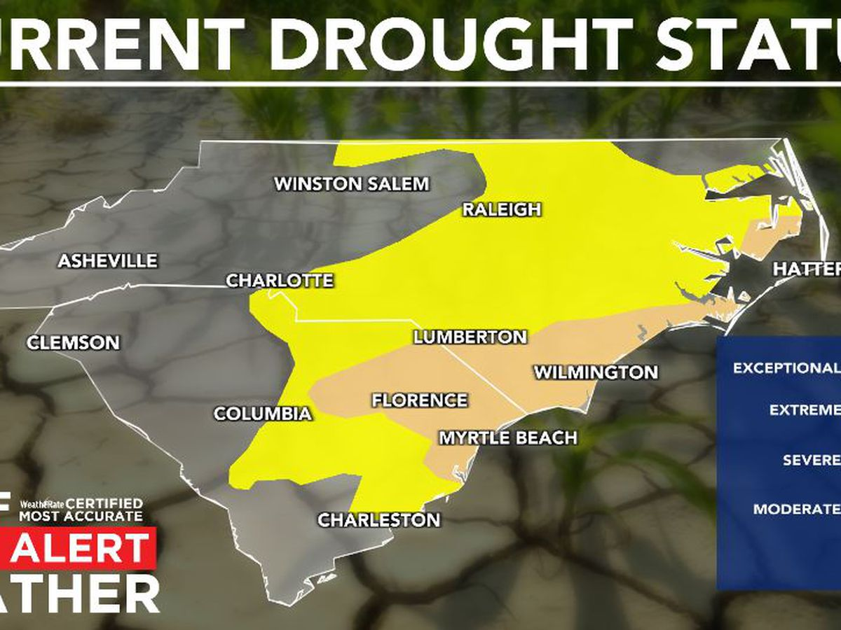 FIRST ALERT: Drought conditions declared across Grand Strand, Pee Dee