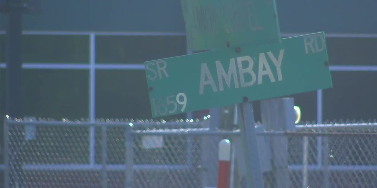 1-year-old rushed to hospital after dog attack, deputies say
