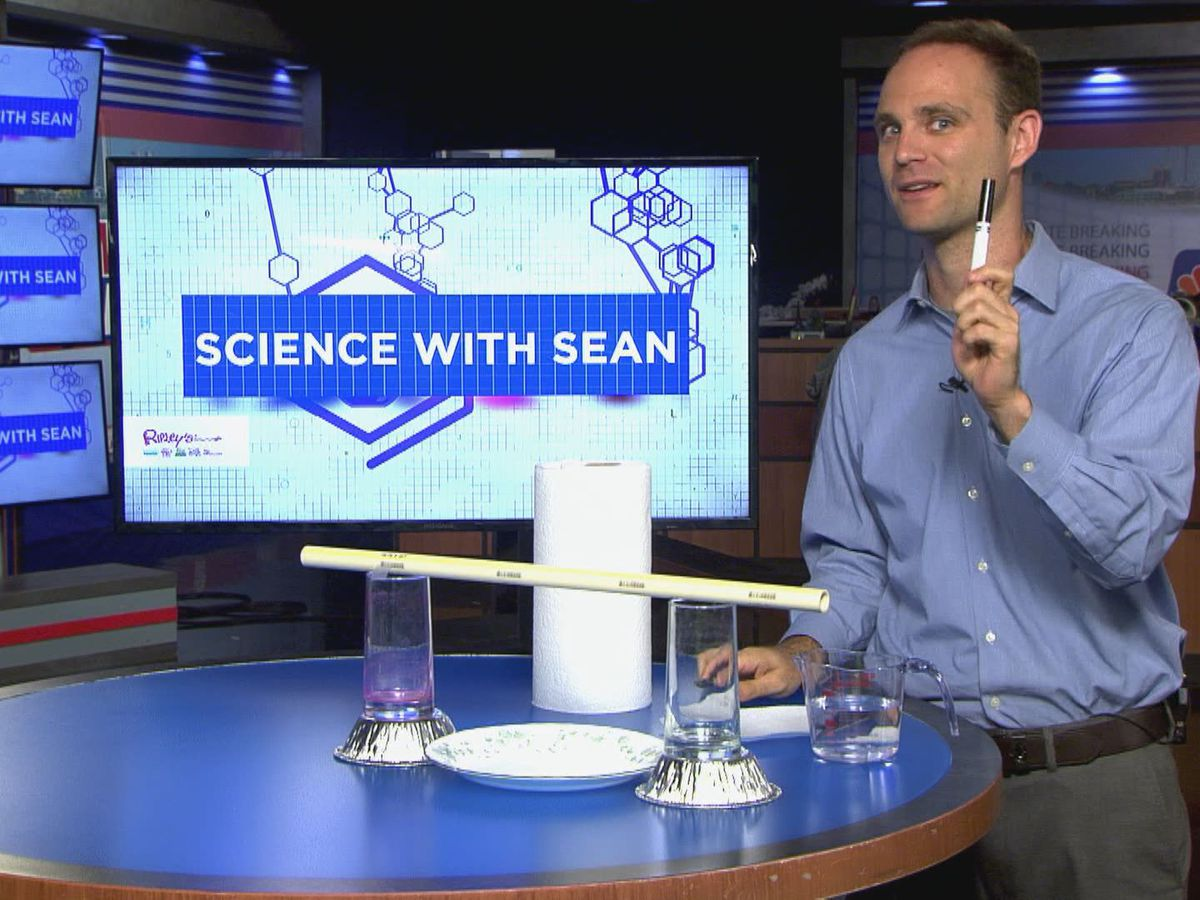 Science with Sean: Capillary Motion