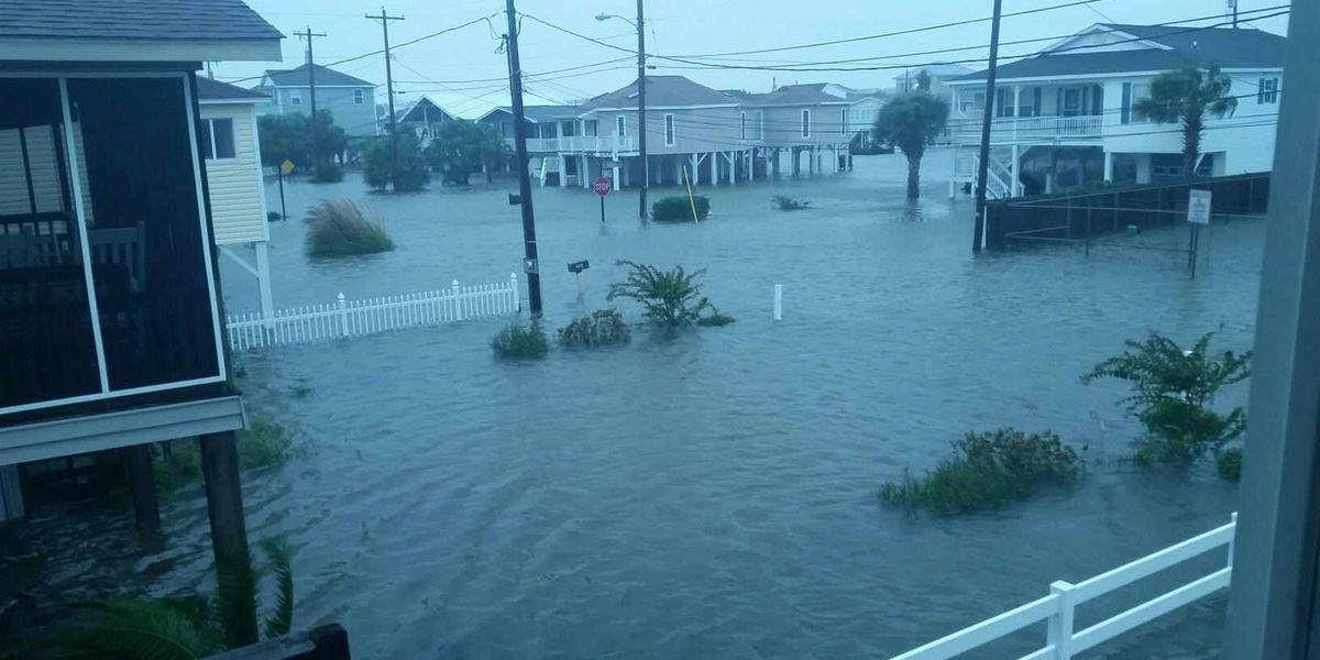 DSS to offer replacement SNAP benefits following Hurricane Matthew