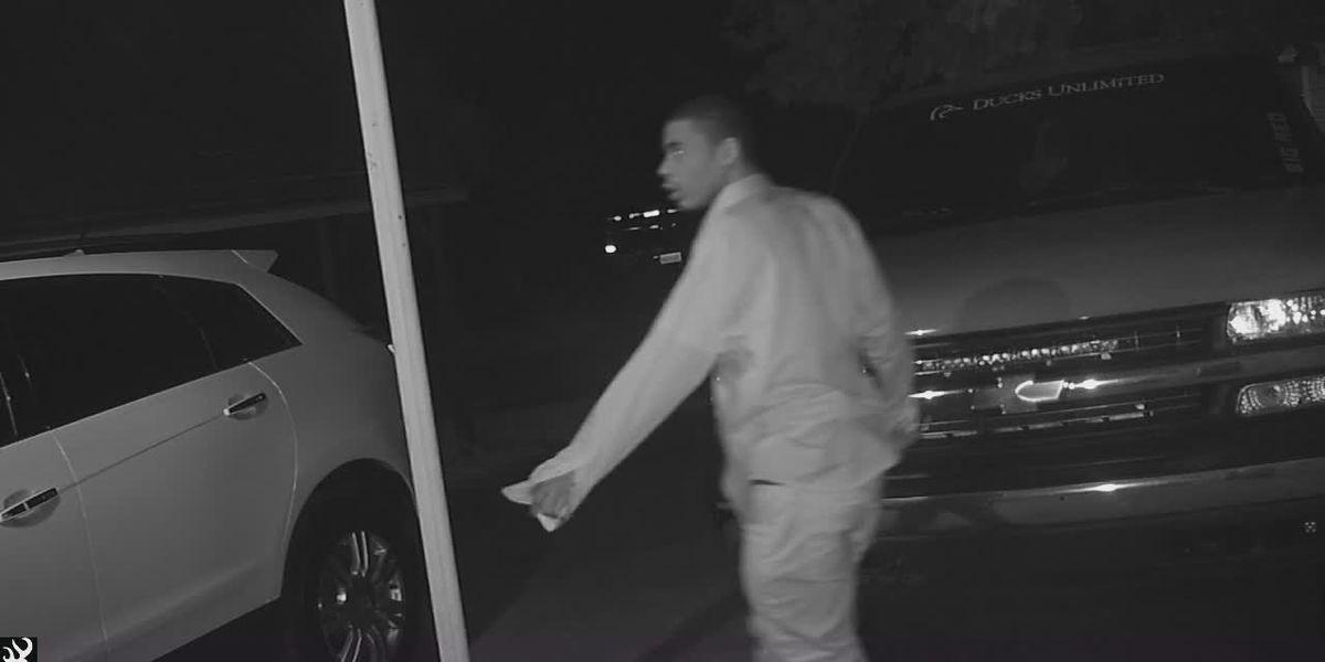 Surveillance camera captures vehicle break-in suspect in Florence County