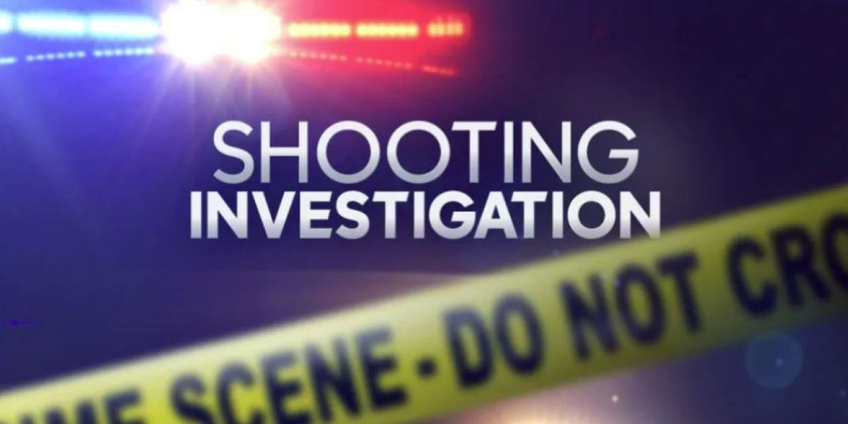 Police respond to report of shots fired in Bennettsville