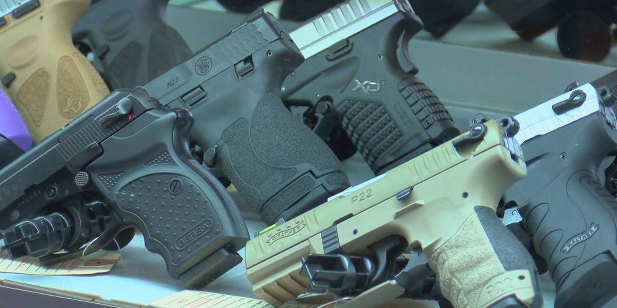 Horry County Council encouraged to become Second Amendment sanctuary county