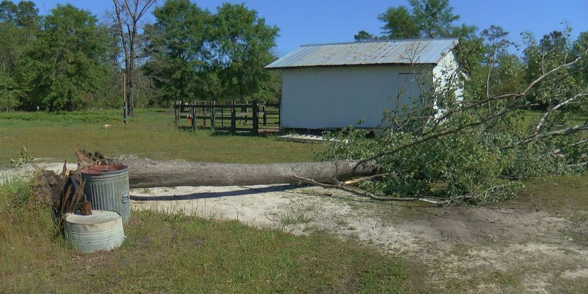Conway man 'very grateful' storm caused minor damage