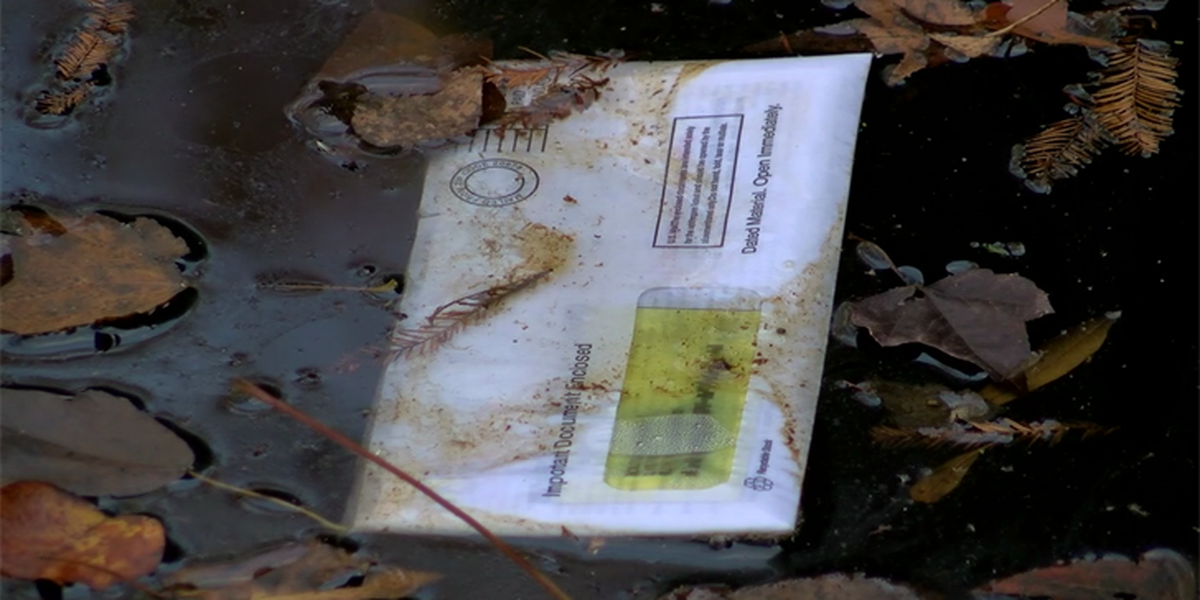 Mail found in creek near Timmonsville reportedly stolen from mailboxes