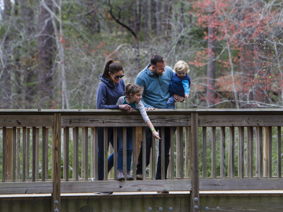S.C. state parks offer mountains to sea virtual field trips