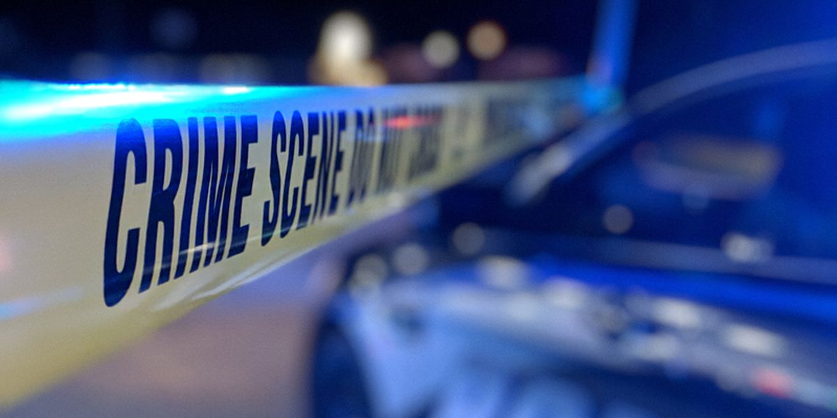 Coroner: 84-year-old woman shot, killed in Myrtle Beach area