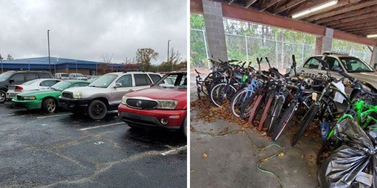 Horry County police auctioning off abandoned vehicles, lawn equipment, other items